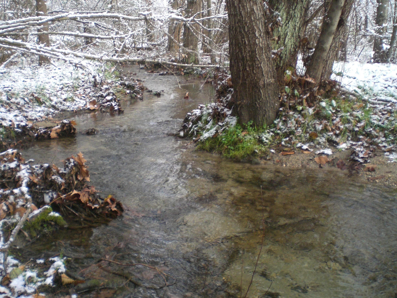 Luciano erba brianza - Letto di un fiume ...